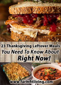 23 Tasty Thanksgiving Leftovers You Need To Know About Right Now