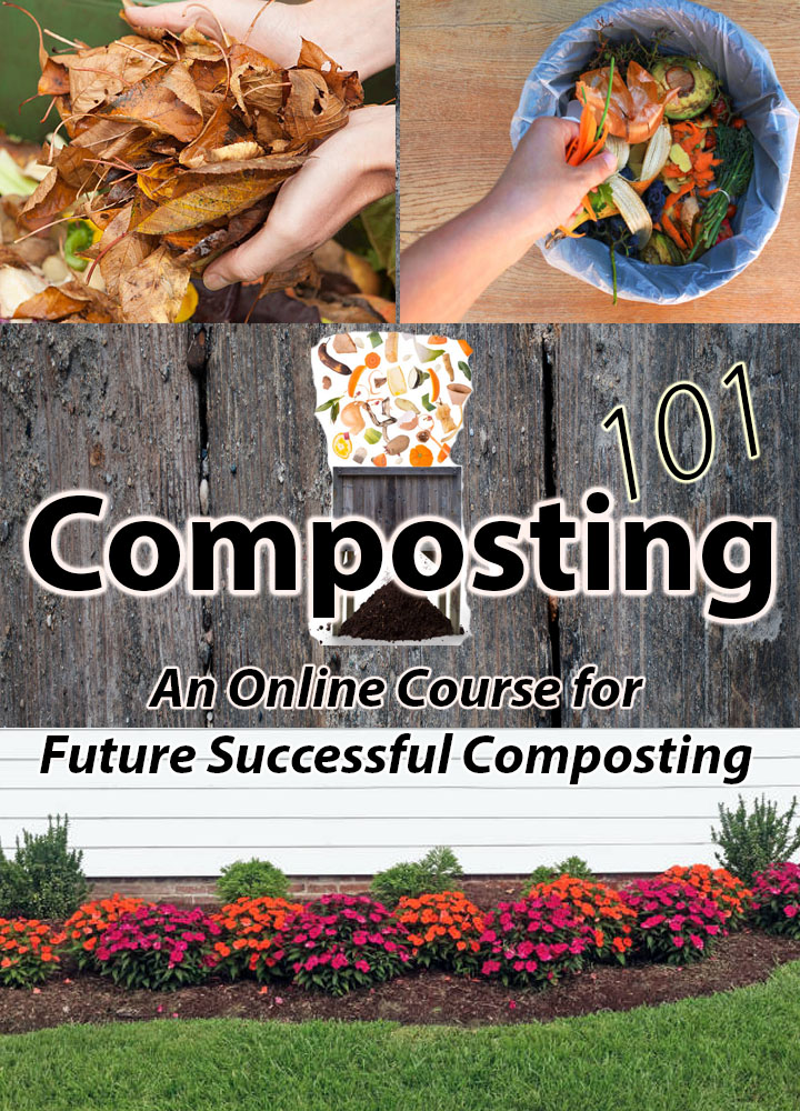 quick composting tips