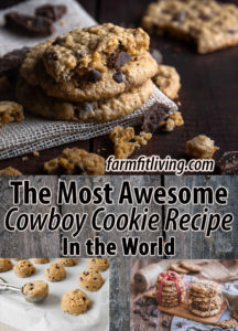 The Most Awesome Cowboy Cookie Recipe in the world