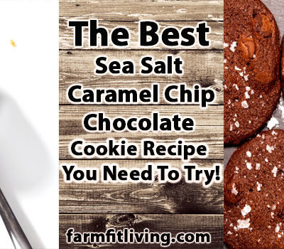 The Best Sea Salt Caramel Chip Chocolate Cookie Recipe You Need To Try