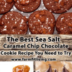 The Best Sea Salt Caramel Chip Chocolate Cookie Recipe