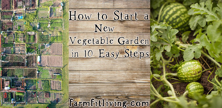 start a new vegetable garden