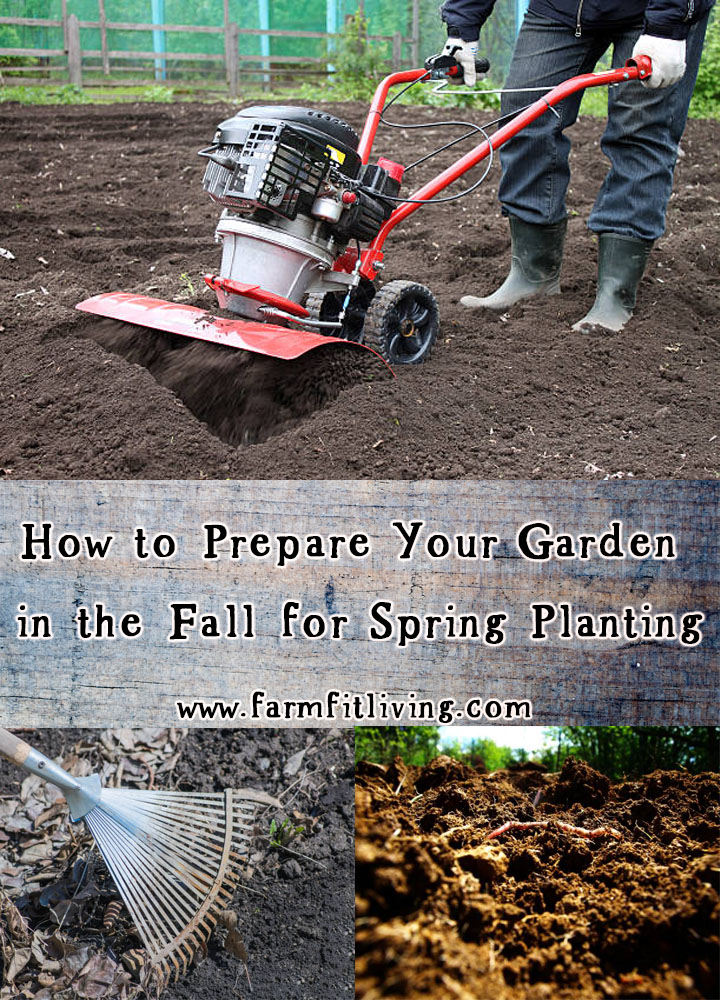 how to prepare your garden in the fall