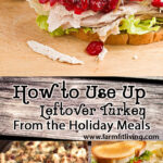 how to use up leftover turkey