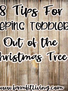 keeping toddlers out of the Christmas Tree